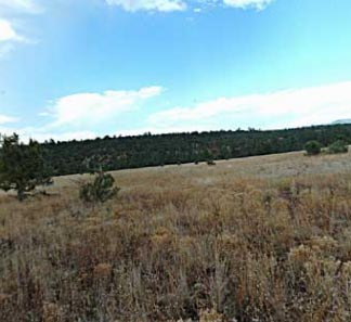 Beaver Creek Watershed grassland and pinyon-juniper woodland