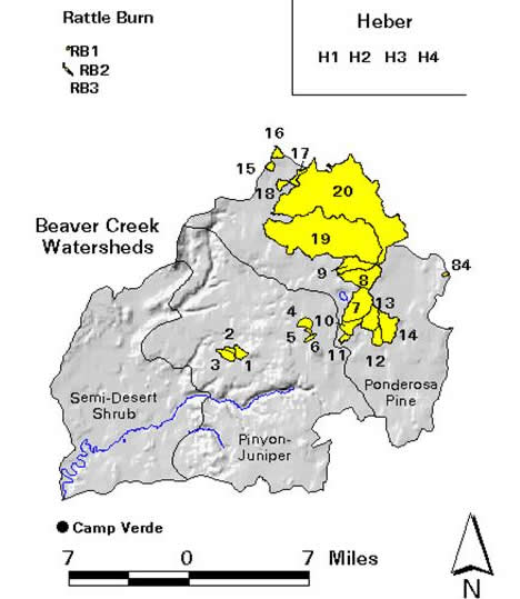 Beaver Creek Site : Experimental Watershed Data